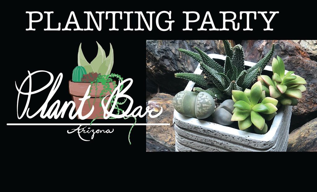 Sign-Up: Planting Party at the Anthem Community Center!