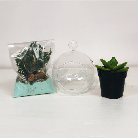 DIY Terrarium Kit Gift