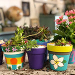 Plant Adventure Workshop Tuesday March 17th (Multiple Times)