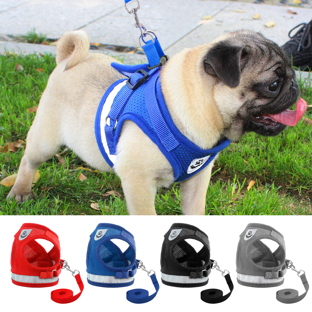 Dog Harness Pug Small & Medium Dogs – Gadget Flash Store