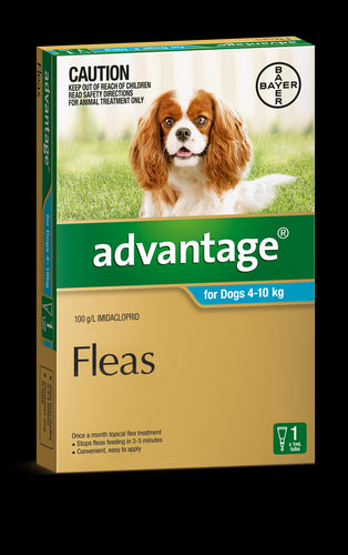 Advantage Dog 4-10kg Medium Teal 1's