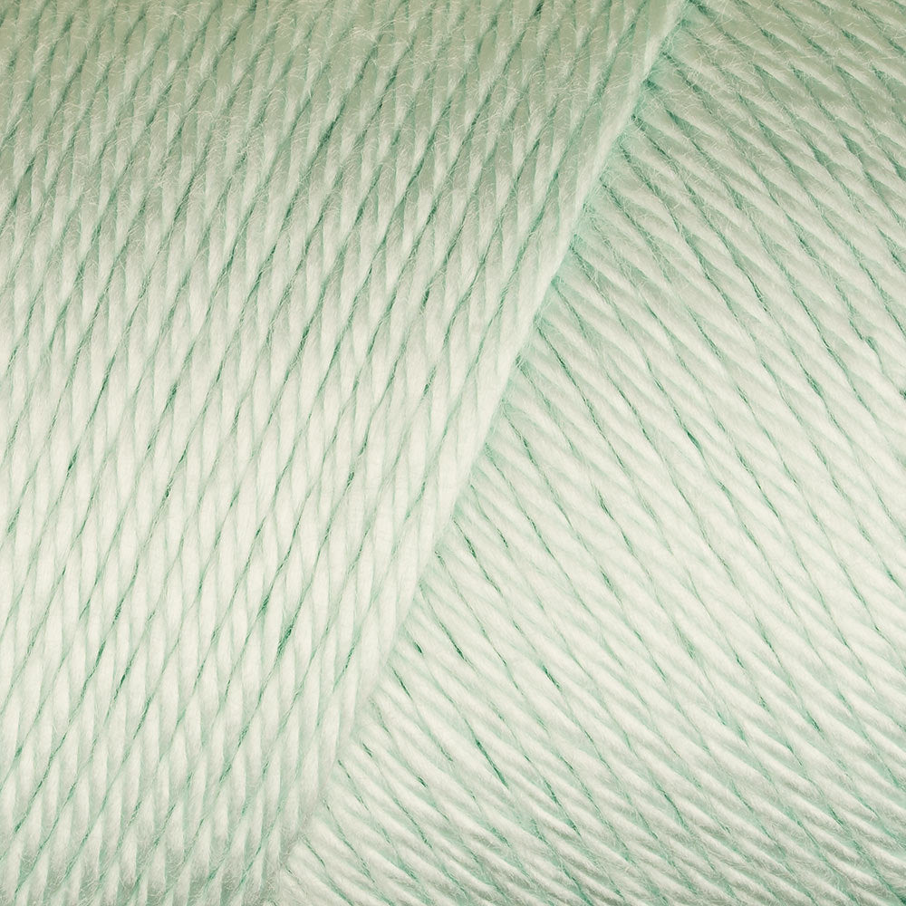 Caron Simply Soft - Soft Green 9739