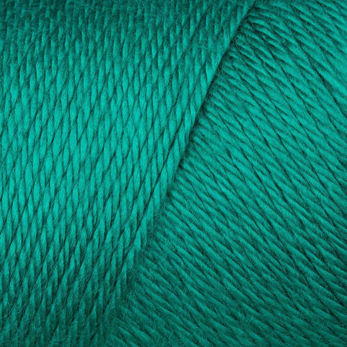 Caron Simply Soft - Cool Green 9770