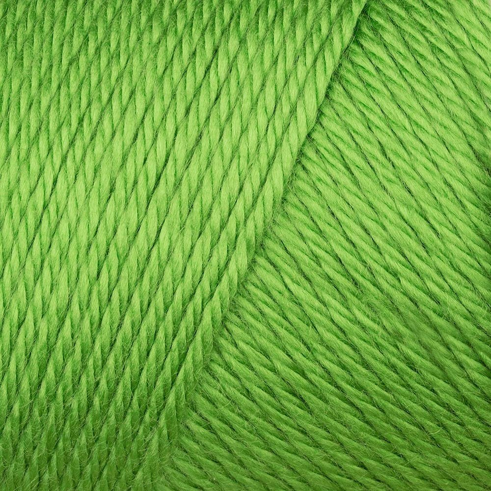 Caron Simply Soft - Green 9779