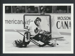 Original Felix Potvin Toronto Maple Leafs Press Photo 1995  The Picture Desk - Skeoch  Sporting News Collection  NHL Hockey Memorabilia
