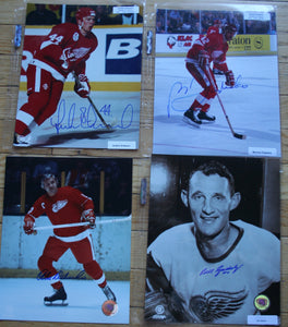 4 Autographed Detroit Red Wings 8x10 Photos  Eriksson, Federko, Delvecchio, Gadsby  FREE SHIPPING  c/w COA  NHL Hockey Memorabilia