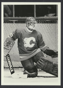 Dan Bouchard Calgary Flames 1983 NHL Hockey Press Photo -Sporting News