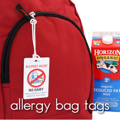 Allergy Alert Bag Tags