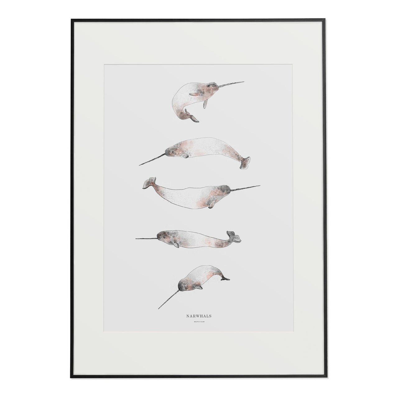 Baltic Club Photography & Prints Narwhals Art Print