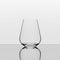 Richard Brendon Tabletop Stemless Water Glass