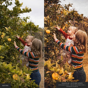 DigiFilm | Autumn Spice - Lightroom & ACR Presets
