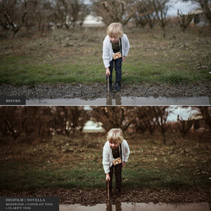 The DigiFilm Bundle - 7 Lightroom & ACR Preset Collections