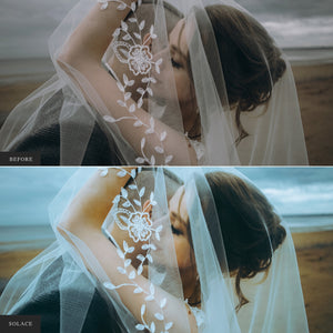 The Full Site Bundle - 25 Lightroom & ACR Preset Collections