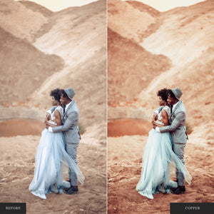 The Wedding Palettes Bundle - 14 Lightroom & ACR Preset Collections