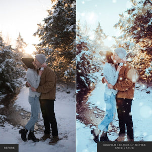 DigiFilm | Shades of Winter - Lightroom & ACR Presets