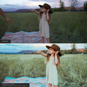 DigiFilm | Lumena - Lightroom & ACR Presets