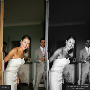 Monochrome: Wedding I - Lightroom & ACR Presets