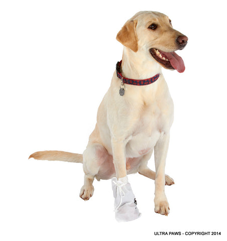 Ultra Paws Disposable Dog Boot Wraps