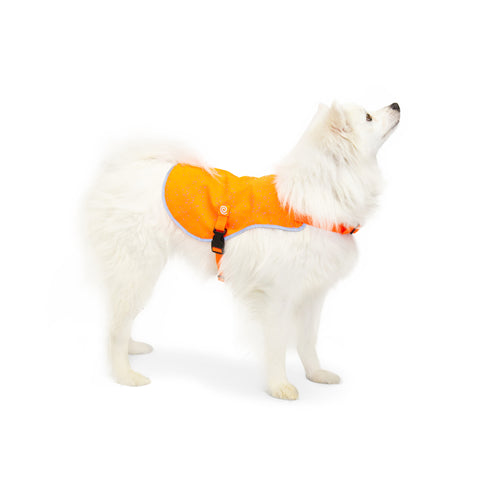 NEW! Ultra Reflective Safety Vest