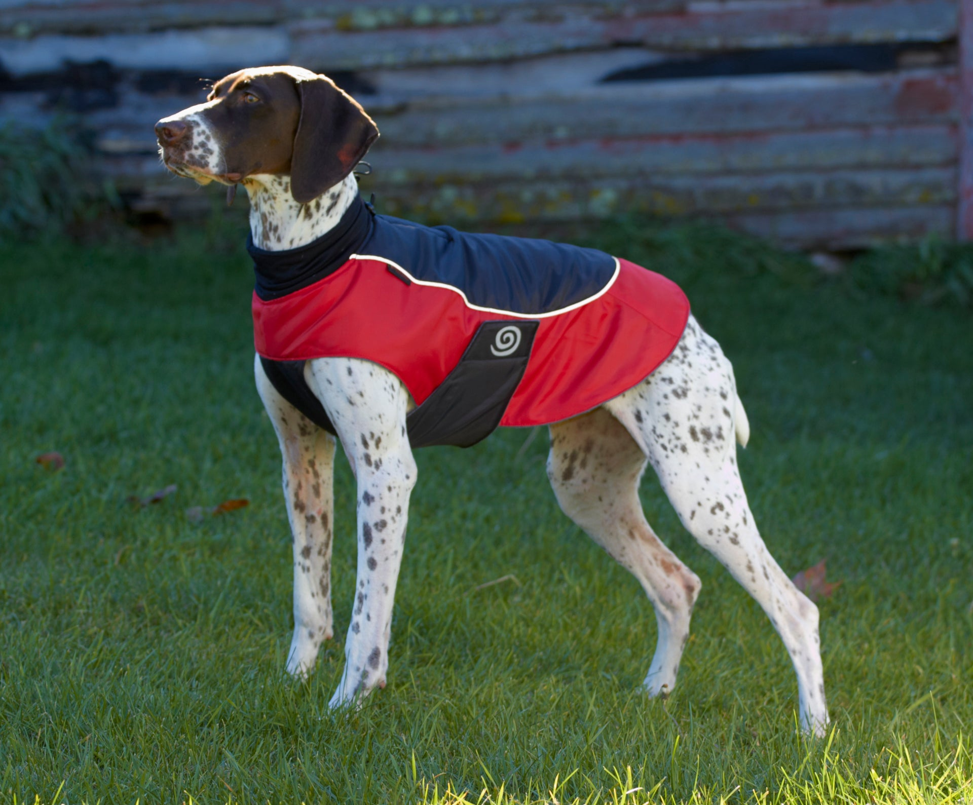 7ef1c5069 7  The Comfort Coat  This is the perfect gift for people with dogs who live  in snowy or cold climates. It s ultra-practical with a waterproof shell