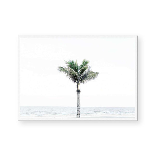 Peaceful Palms II