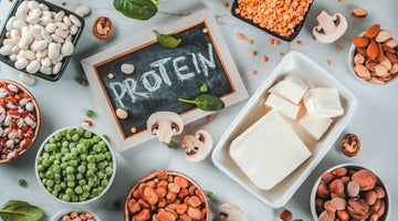 Why More People are Turning to Plant-Based Protein Sources