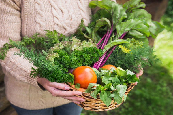 How to Maximize Your Vegetable Garden Production This Year