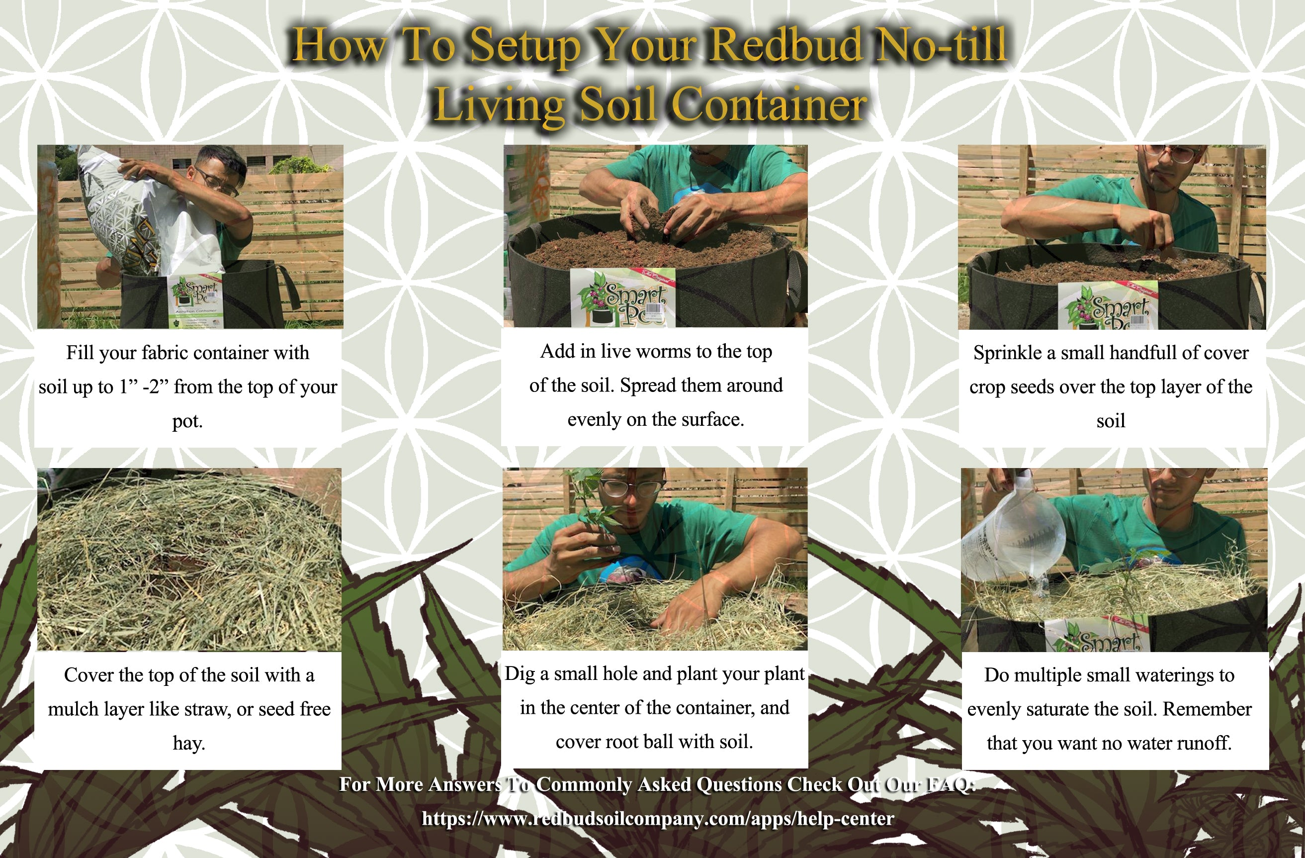how to setup a no-till living soil container