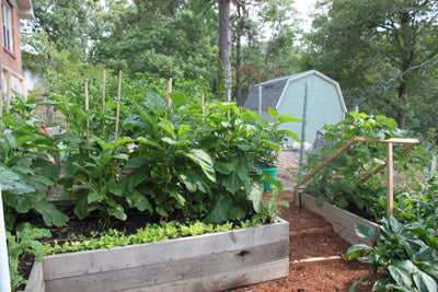 diy raised garden beds with multiple layers of plants