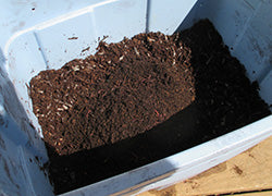 plastic tote worm farm for vermicomposting