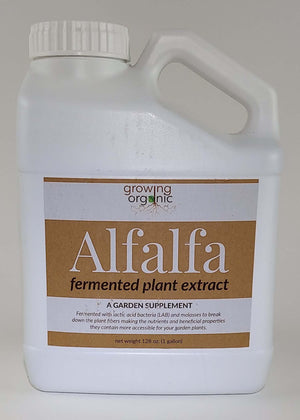 Alfalfa Fermented Plant Extract - 1 Gallon