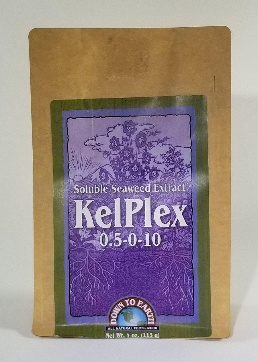 Soluble Seaweed Powder Kelpex 4 OZ