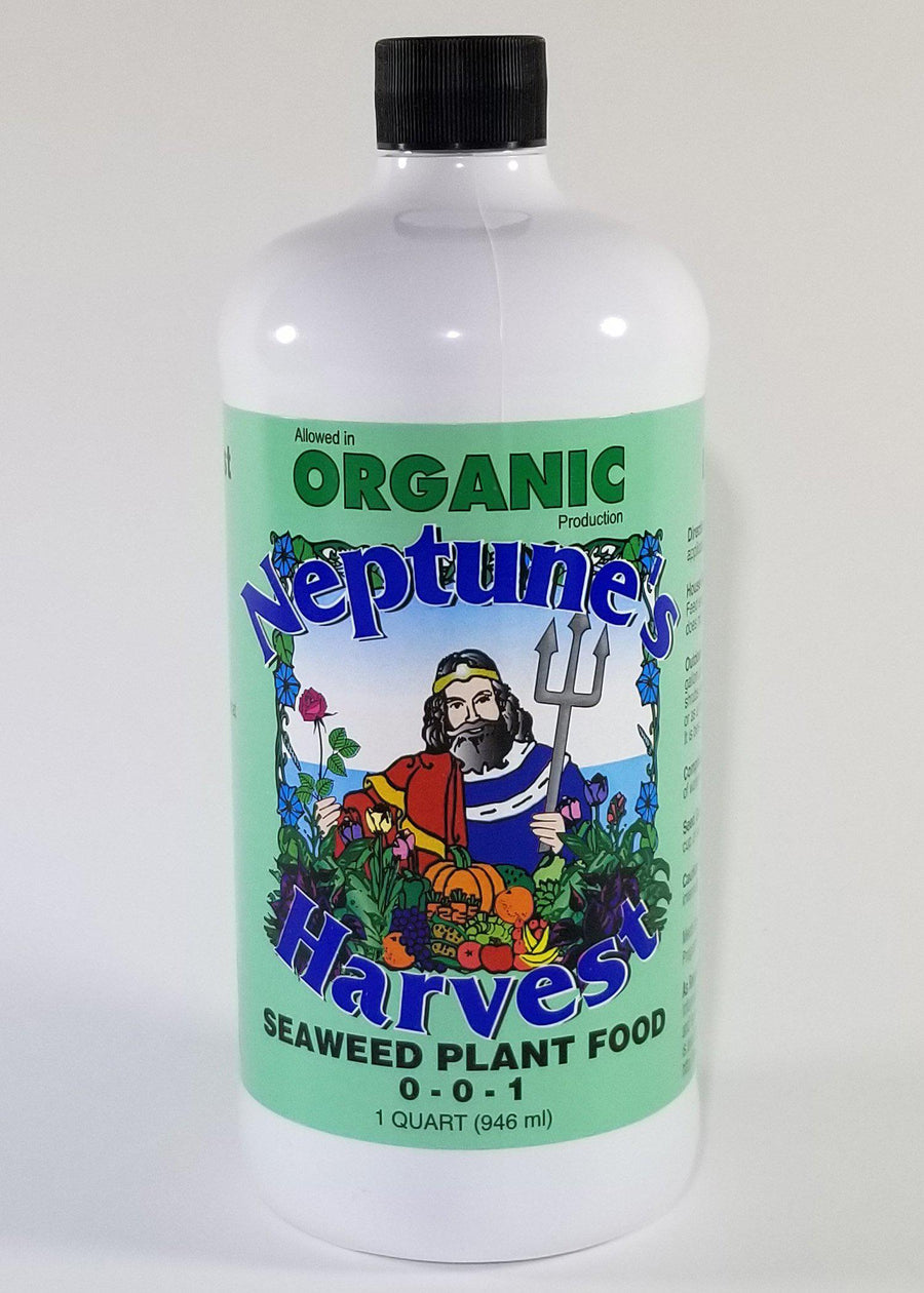 Neptune's Harvest Seaweed Fertilizer Quart
