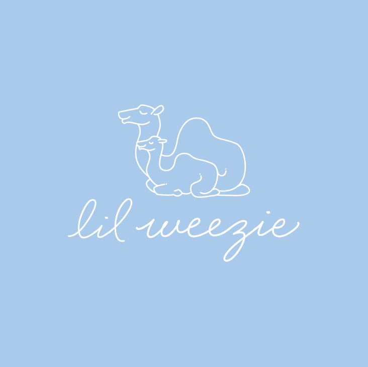 Introducing Lil' Weezie: our baby & kids collection