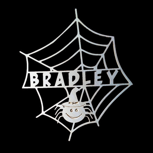 Cute Spider in Web for Halloween Door Decor
