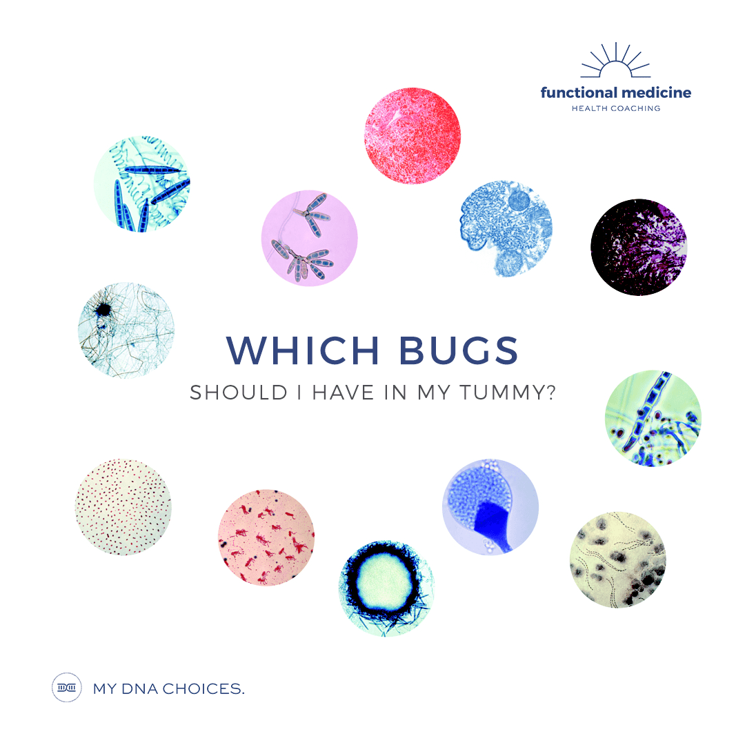 Which bugs should I have in my tummy?