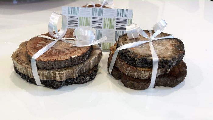 Fossilized Wood - Coaster set