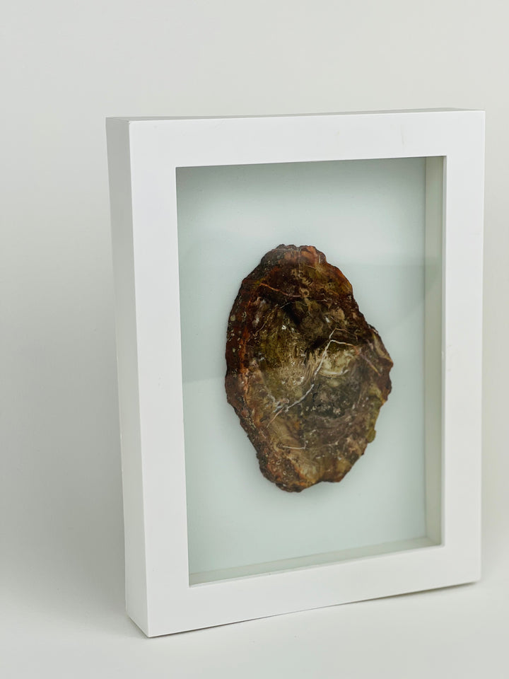 Petrified Wood Frame