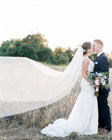 Emma Pearl & Crystal Beaded Veil