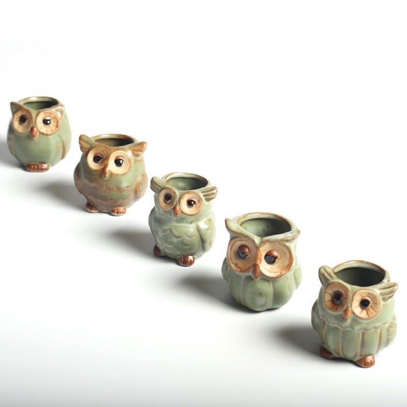 5 Pcs/Set Creative Ceramic Owl Shape Flower Pots for Fleshy Succulent Plant Animal Style Planter Home Garden Office Decoration