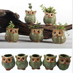 Kawaii Fat Owl Ceramic Flower Pots for Fleshy Succulent Plant Animal Style Planter Home Garden Office Decoration