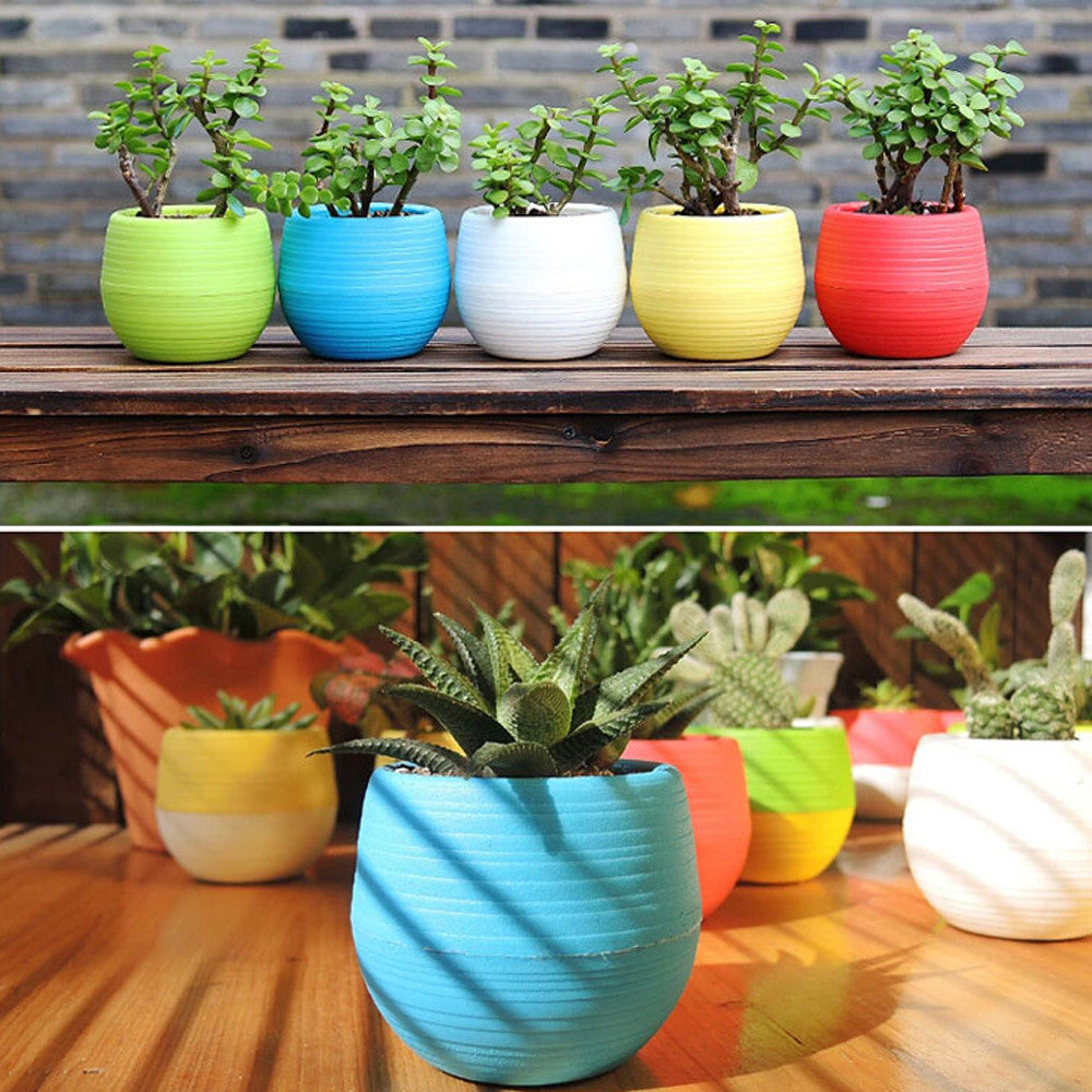 Mini Colourful Round Plastic Plant Flower Pots Home Office Decor Planter  Decorative Crafts in the bedroom, living room