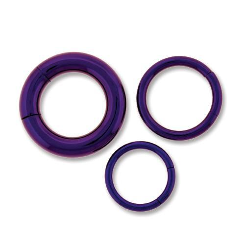 Dark Purple Astm Titanium Segment Ring 10G-14G - 2 Pieces