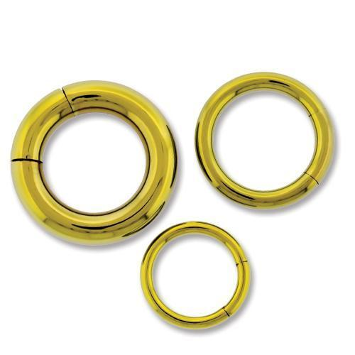 Gold Astm Titanium Segment Ring 10G-14G - 2 Pieces #SPLT#