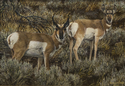 Antelope Minature by Karla Mann