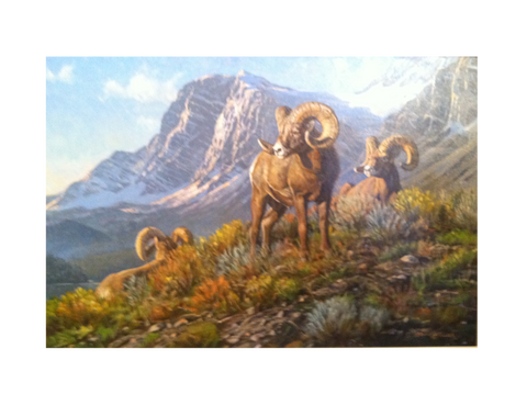 Three Rams by Bruce Miller