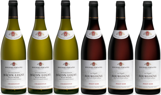 Bouchard Bourgogne Mixed Red/White (Case of 6)