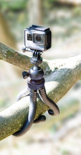 Load image into Gallery viewer, Universal Flexible Tripod with 360 Degree Ball Head & Rubberized Bendable Legs