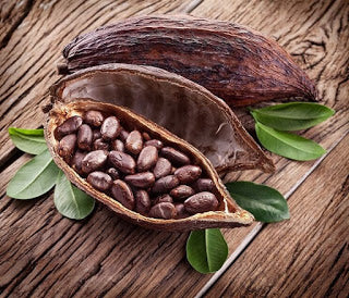Cocoa vs Cacao - What You Should Know