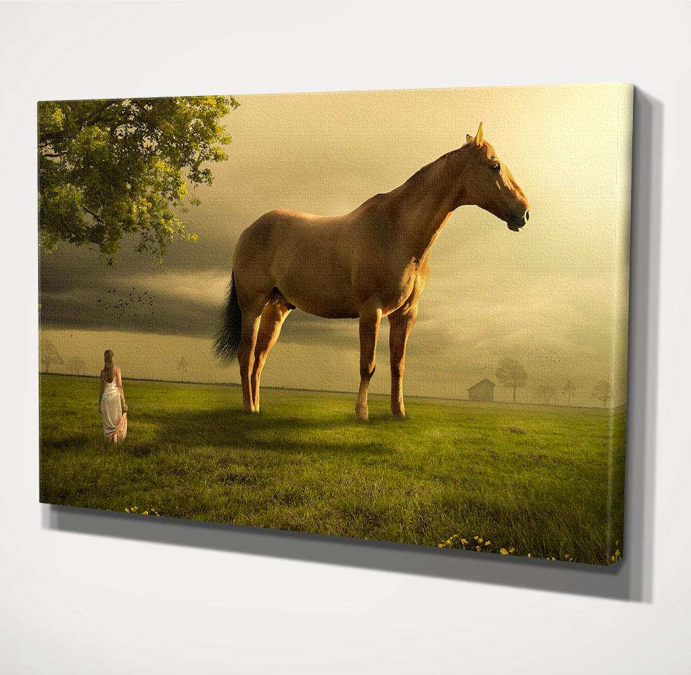 Home Decor Wall Art, Horse And Women (Wood Frame Ready To Hang ...